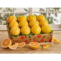 Sunshine Special Ruby  Red Grapefruit
