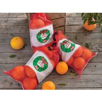 Christmas Citrus 6-Packs