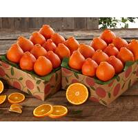 Save 10% on 2 Shipments of Honeybells