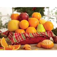 Grove Holiday Fruit Basket