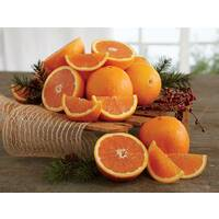 Red Navel Oranges & Grove Navels
