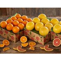 Save 10% on 2 Shipments of Navels and Grapefruit