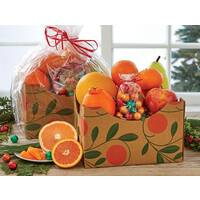 Colorful Fruit Basket Box