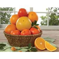 Citrus-Lovers Basket