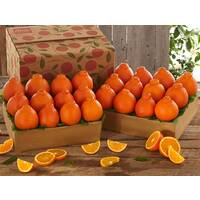 Buy 1 Get 1 Free Honeybells