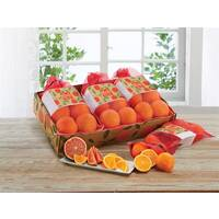 Farmstand Gift Bags